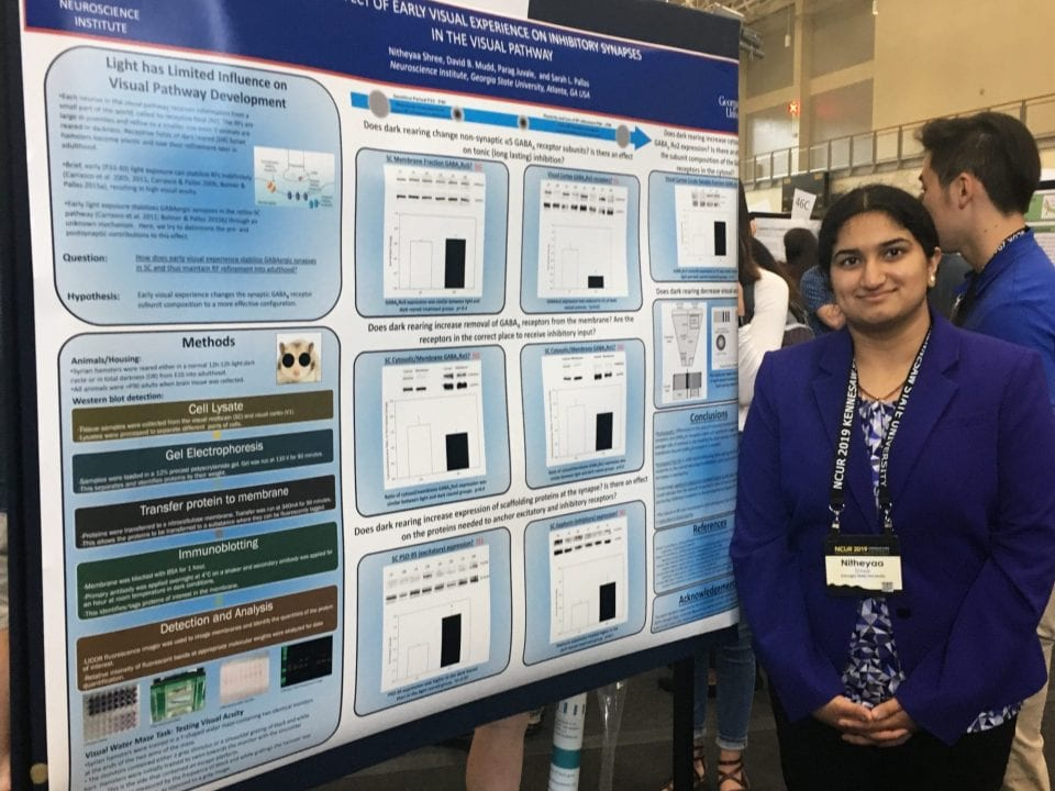 Nitheyaa Shree presents her research during the 2019 National Undergraduate Research Conference
