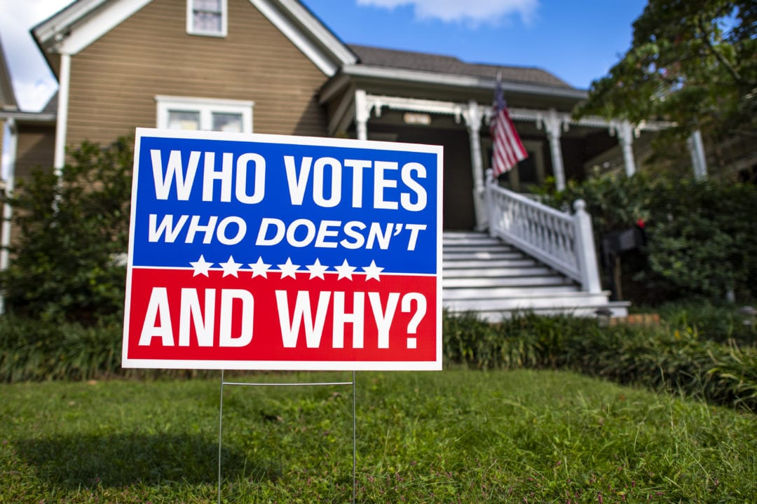 voting behavior political yard sign